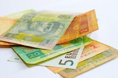 Billete de banco del euro 5 entre el hryvnia ucraniano Imagen de archivo