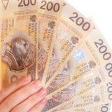 Billete de banco femenino del dinero de la moneda del pulimento de la tenencia de la mano Imagen de archivo libre de regalías