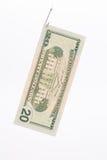 Billete de dólar en un gancho Fotos de archivo