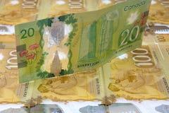 Billete de dólar del canadiense veinte Imagenes de archivo