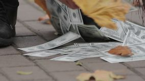 Billetes de banco arrebatadores del dólar del limpiador de calle en la calle de la ciudad, valor perdidoso del dinero metrajes