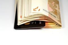 Billetes de banco de la tarjeta de crédito y euro Fotos de archivo