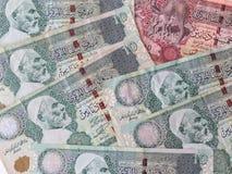 Billetes de banco de Libia Fotos de archivo libres de regalías