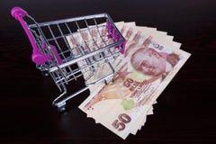 Billetes de banco de la lira turca con concepto consumidor del carro de la compra Foto de archivo libre de regalías