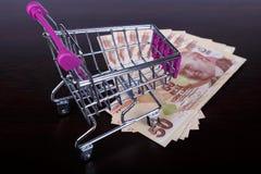 Billetes de banco de la lira turca con concepto consumidor del carro de la compra Foto de archivo