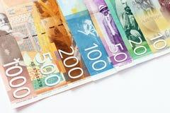 Billetes de banco servios del dinar imagenes de archivo