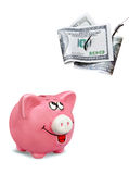 Billets d'un dollar sur un hameçon Images stock