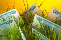 Billets de banque de rouble russe dans l'herbe verte Image libre de droits