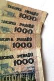 Billets de banque des roubles biélorusses sur un blanc Photographie stock libre de droits