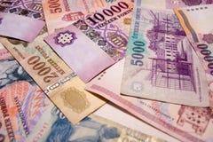 Billets de banque hongrois Images libres de droits