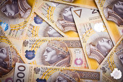 Billets de banque polonais d'argent Photos libres de droits