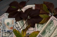 Billets de banque populaires, dollars partout Images libres de droits