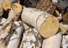 Billetta di legna da ardere. Fotografia Stock
