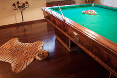 Billiard table with mock tiger skin rug Stock Image