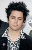 Billie Joe Armstrong Royalty Free Stock Images