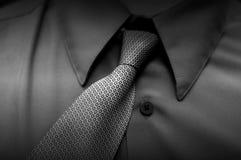 billig tie Fotografering för Bildbyråer