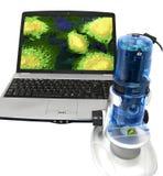 billigt mikroskop för elektron royaltyfria foton