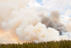 Billowing Fire Clouds in Yellowstone Park stock photo