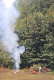 Billowing Smoke From Garden Waste Fire Stock Image