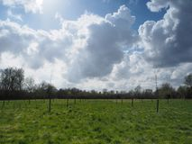 Billowing white cumulus clouds above a green meadow Royalty Free Stock Images