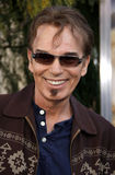 Billy Bob Thornton foto de stock