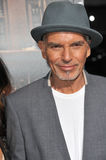 Billy Bob Thornton. LOS ANGELES, CA - OCTOBER 1, 2014: Billy Bob Thornton at the Los Angeles premiere of his movie The Judge at the Samuel Goldwyn Theatre stock photos