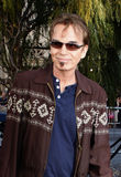 Billy Bob Thornton. At the Los Angeles Premiere of `Legends of the Guardians: The Owls of Ga`Hoole` held at the Grauman`s Chinese Theater in Hollywood Stock Photos