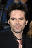 Billy Burke Royalty Free Stock Images
