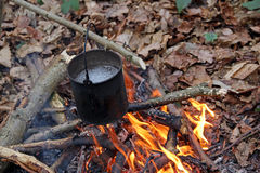 Billy can campfire. Photo of boiling water in a billy can suspended over a campfire in the woods stock image