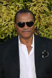Billy Dee Williams Royalty Free Stock Images