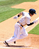 Billy flamand, Charleston RiverDogs Obraz Stock