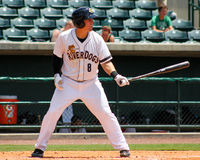 Billy Fleming, Charleston RiverDogs Royalty Free Stock Photography