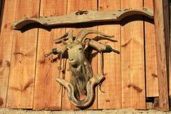 Billy Goat Images libres de droits