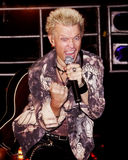 Billy Idol Royalty Free Stock Photo