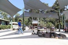 Billy tea performance in paradise country aussie farm,gold coast,australia Royalty Free Stock Photo