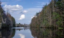 Billys Lake, Okefenokee Swamp National Wildlife Refuge. Okefenokee paddling canoe trail trek, Billy`s Lake, black tannin water, blue sky clouds, Pond Cypress and Royalty Free Stock Images