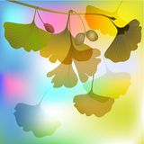 Biloba in autumnal sunlight illustration Royalty Free Stock Photography