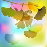 Biloba nell'illustrazione d'autunno di luce solare Fotografia Stock Libera da Diritti