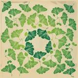Biloba vintage pattern Stock Image