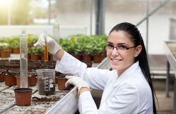 Biloist holding test tube in greenhouse Royalty Free Stock Image