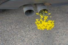 Bilröravgasrör, med guling våldtar Fotografering för Bildbyråer