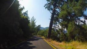 Bilritter på en bergskogväg med vänd i sommar i soligt stock video