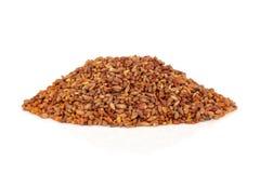 Bilta Seed Stock Photos