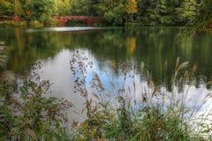 Biltmore Bass Pond stockfoto