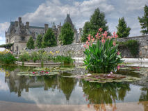 Biltmore Estate. View of the Biltmore Estate from the Water Garden Stock Photo