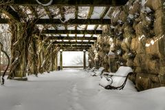 Biltmore's Arbor In Snow Royalty Free Stock Image