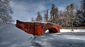 Biltmore siklawa W śniegu Fotografia Stock