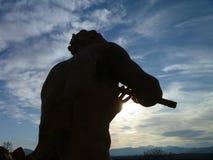 Biltmore staty av pannan Arkivbilder