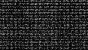 Binär Code-Schirm stock video footage