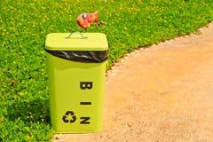 Bin. A green bin on flower background royalty free stock photos